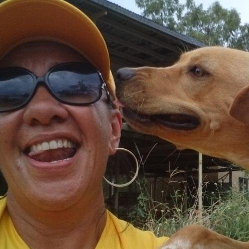 Queenie t - Profile for Pet Hosting in Australia