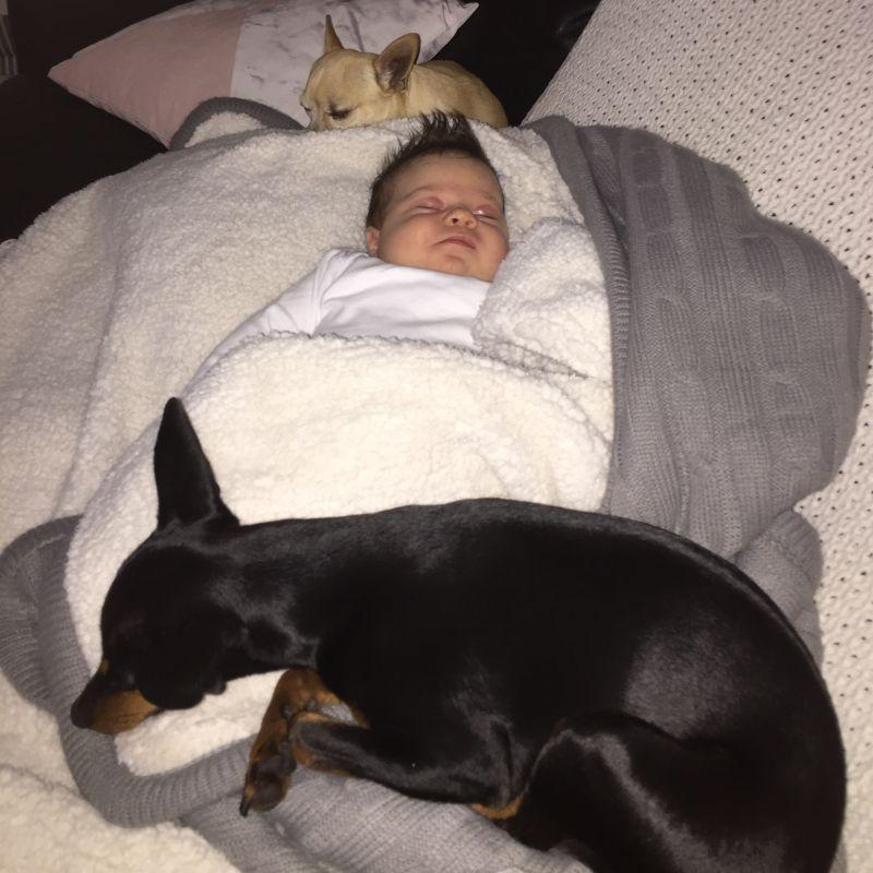 Kelly D - Review for Pet Hosting in Australia