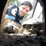 Enric N - Profile for Pet Hosting in Australia