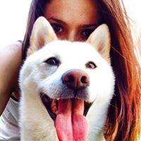 Krystel P - Review for Pet Hosting in Australia